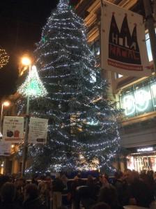6)クリスマスツリーが素敵です